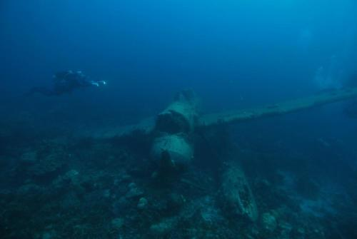 Palau-1